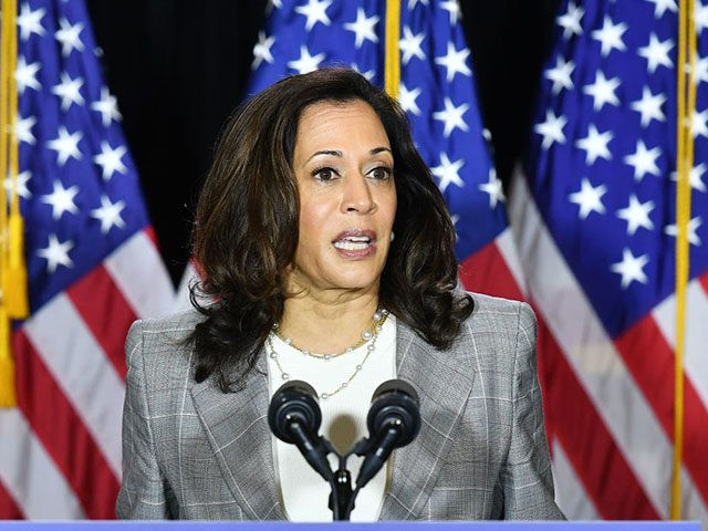 Democratic vice presidential running mate, US Senator Kamala Harris, speaks to the press after receiving a briefing on COVID-19 in Wilmington, Delaware, on August 13, 2020. (Photo by MANDEL NGAN / AFP) (Photo by MANDEL NGAN/AFP via Getty Images)