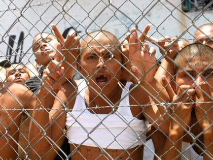 TEGUCIGALPA, HONDURAS: Inmates of the Central Penetentiary, most members of the youth ganges, MS-13 or Salcatrucha, rebelled on 5 June 2001, because the number of visits allowed to the inmates had been decreased by the government, Tegucigalpa, Honduras. Reclusos de la Penitenciaria Central, en su mayoria miembros de las pandillas …