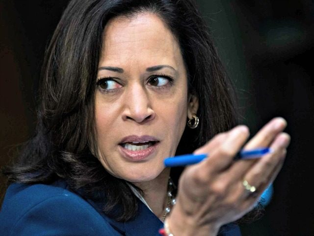 Kamala Harris Blasted for Supporting Small Businesses Despite Promoting Bailing Out Protesters