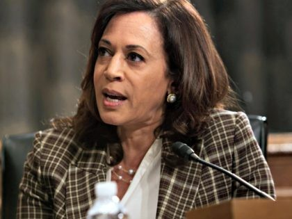 Sen. Kamala Harris, D-Calif., speaks during a Senate Homeland Security and Governmental Affairs Committee hearing to examine Department of Homeland Security personnel deployments to recent protests on Thursday, Aug. 6, 2020, in Washington. (Alex Wong/Pool via AP)