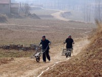 To go with: China-economy-drought-farm,FOCUS by Boris CambrelengFarmers walk between fields in eastern China, where a record drought threatens to push global food prices up on February 22, 2011. The Chinese government has allocated 13 billion yuan ($2 billion) to combat the drought and the central bank announced this week it …