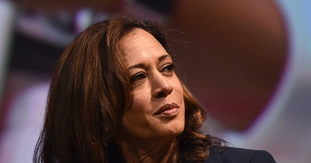 Kamala Harris Hints She Discussed Filibuster Changes on 'Voting Rights' with Senators