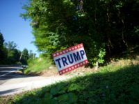 Woman Shot with BB Gun After Taking Trump Sign from Wrong Yard