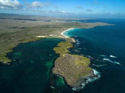 China bans its fleet from fishing off Galapagos reserve