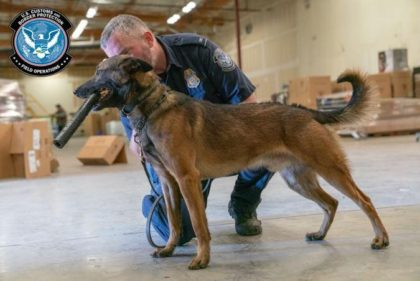 A CBP K-9 receives his reward for detecting a shipment of methamphetamine concealed in a box of powdered drink mixes. (Photo: U.S. Customs and Border Protection)