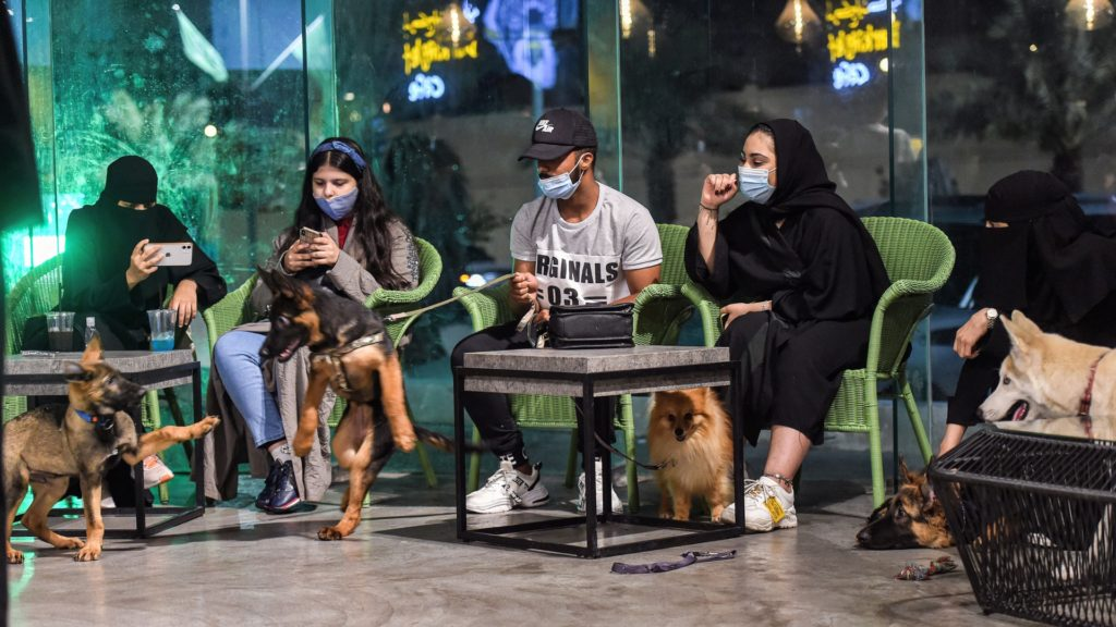 """German Shepherds play together as their mask-clad owners (COVID-19 coronavirus pandemic precaution) sit by at the """"Barking Lot"""" cafe in Saudi Arabia's eastern Gulf city of Khobar, 450 kilometres east of the capital, on September 25, 2020. - Dog owners in Saudi Arabia can now enjoy a cup of coffee outside their home alongside their beloved pets in a new cafe -- a first for the ultra-conservative kingdom. The Barking Lot, which opened its doors in June in the coastal city of Khobar, has brought them much relief amid restrictions on animals in public places. Dogs are generally prohibited from walking in public and, unlike cats, are considered unclean in Islam, which originated in Saudi Arabia. (Photo by FAYEZ NURELDINE / AFP) (Photo by FAYEZ NURELDINE/AFP via Getty Images)"""