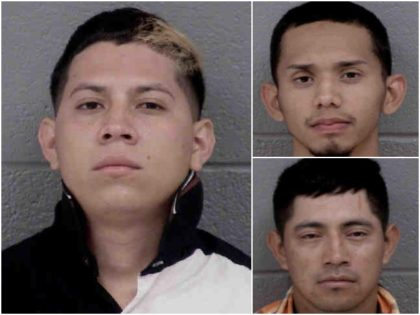 A number of criminal illegal aliens have been arrested by …