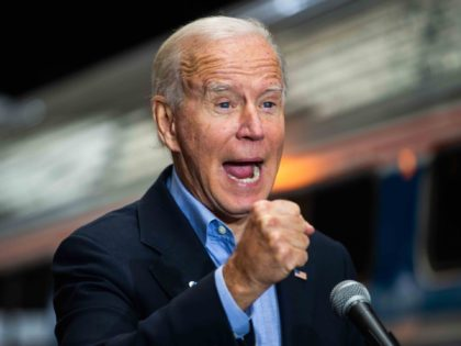 Joe Biden (Roberto Schmidt / Getty)