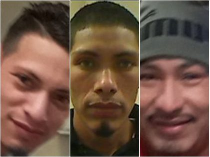 Three brothers, two of whom are illegal aliens, stand accused …