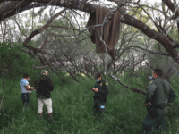 GRAPHIC: Migrant's Decaying Body Found on Texas Ranch 80 miles from Border
