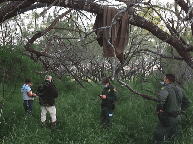 A t-shirt hanging in a tree branch marks the spot were officials found the remains of a migrant on a Texas ranch 80 miles north of the Mexican border. (Brooks County Sheriff's Office/Deputy Jose Garcia)