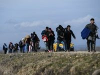 Majority of Germans Fear Taking Migrants from Greece Will Trigger New Migrant Wave