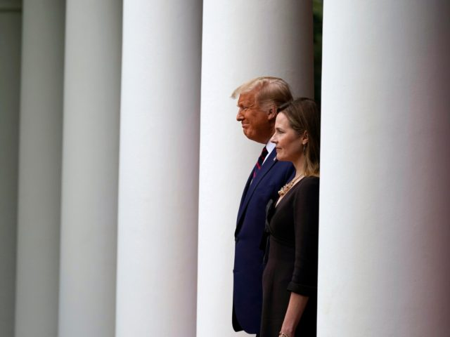 President Donald Trump walks with Judge Amy Coney Barrett to a news conference to announce Barrett as his nominee to the Supreme Court, in the Rose Garden at the White House, Saturday, Sept. 26, 2020, in Washington. (AP Photo/Alex Brandon)