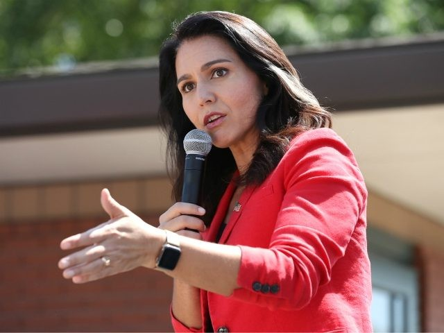 Tulsi Gabbard: Brennans, Schiffs, and Big Tech Oligarchs More Dangerous than Mob that Stormed Capitol