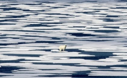 In this Saturday, July 22, 2017, file photo, a polar bear stands on the ice in the Franklin Strait in the Canadian Arctic Archipelago. In a year of cataclysm, some world leaders at September 2020's annual United Nations meeting are taking the long view, warning: If COVID-19 doesn't kill us, …