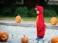 Oh My Gourd! Halloween Trick-or-Treating Banned in England's Coronavirus Hotspots