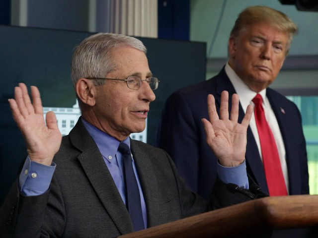 Dr. Anthony Fauci, director of the National Institute of Allergy and Infectious Diseases speaks as President Donald Trump listens during the daily briefing of the White House Coronavirus Task Force at the James Brady Press Briefing Room of the White House April 13, 2020 in Washington, DC. On Monday President …