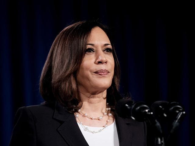 Before Joe Biden Even Elected, Leftist Democrats Already Planning Kamala Harris to Lead 'Post-Biden Democratic Party'