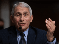 Fauci on Christmas: 'Don't Travel; Don't Congregate Together'