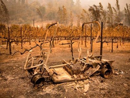 TOPSHOT - The remains of a golf cart burned by the Glass Fire sits next to a vineyard at Calistoga Ranch in Calistoga, Napa Valley, California on September 30, 2020. - Two California wildfires that ravaged Napa's famous wine region and killed three people exploded in size Tuesday as firefighters …
