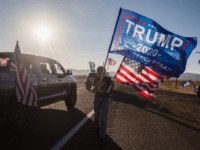 VIDEO: More than 1,500 Cars Line Up for Pro-Trump Parade in Arizona