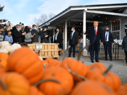 Photos: Donald Trump Visits an Orchard in Maine