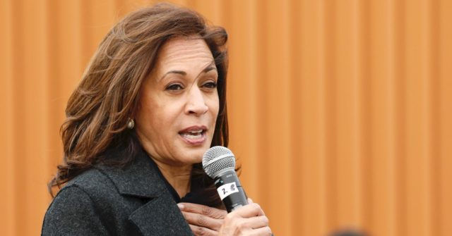 Kamala Harris Lies 4 Times About Trump and Racism on '60 Minutes'