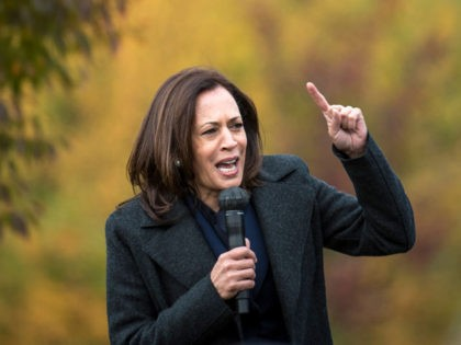TROY, MI - OCTOBER 25: Democratic U.S. Vice Presidential nominee Sen. Kamala Harris (D-CA) speaks at the Troy Community Center on October 25, 2020 in Troy, Michigan. Harris is traveling to multiple locations in the metro Detroit area to campaign for Democratic presidential nominee Joe Biden. (Photo by Nic Antaya/Getty …