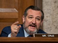 Democrats Vote Against Ted Cruz's Amendment to Stop Stimulus Checks for Illegal Aliens