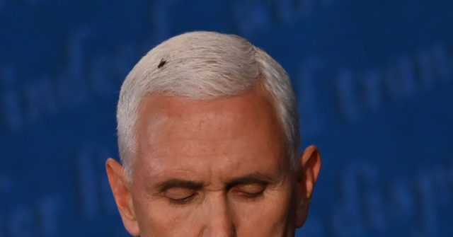 Pollak: Mainstream Media Fixates on Fly After Mike Pence ...