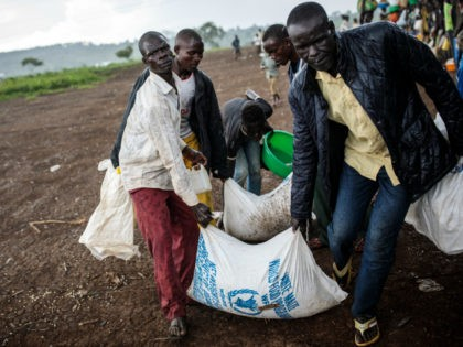Refugees from the Democratic Republic of Congo carry their food collected from the World Food Programme as it rains in the Kyangwali settlement on April 10, 2018 in Kyangwali, Uganda. According to the UNHCR around 70,000 people have arrived in Uganda from the Democratic Republic of Congo since the beginning …