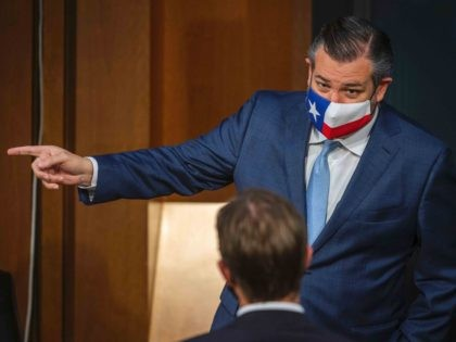 Ted Cruz Texas mask (Bill O'Leary / Pool / AFP / Getty)