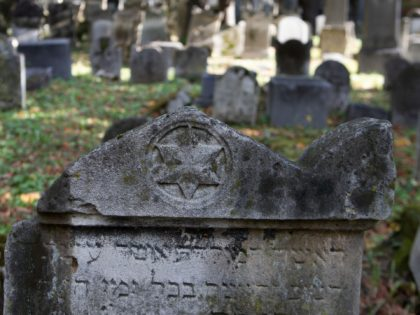 Gravestones are seen at the old Waehring Jewish cemetery in Vienna on October 18, 2020. - The Waehring cemetery has suffered from decades of neglect and vandalism -- including desecration under the Nazis -- but in recent weeks there has been fresh official support for painstaking restoration efforts undertaken here …