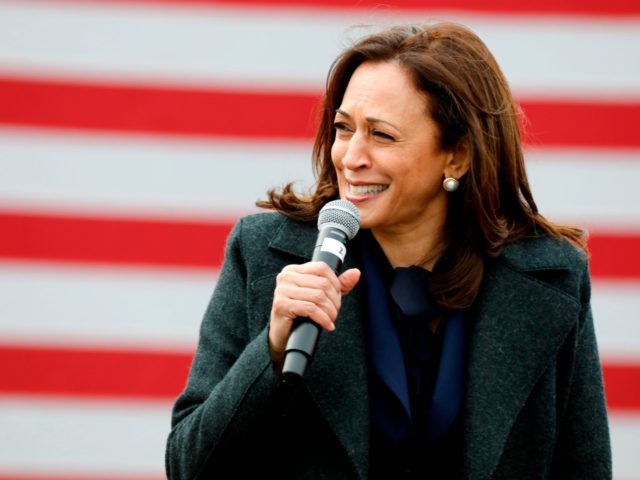 """Democratic vice presidential nominee Senator Kamala Harris (D-CA) speaks at a campaign stop at IBEW Local 58 on October 25, 2020 in Detroit, Michigan. - As she speaks to cheering crowds, drops in to neighborhood coffee shops or pays """"surprise"""" visits to college students, 56-year-old Kamala Harris has brought a …"""