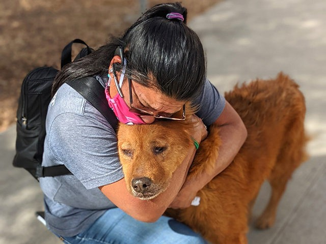 Dog reunited with master