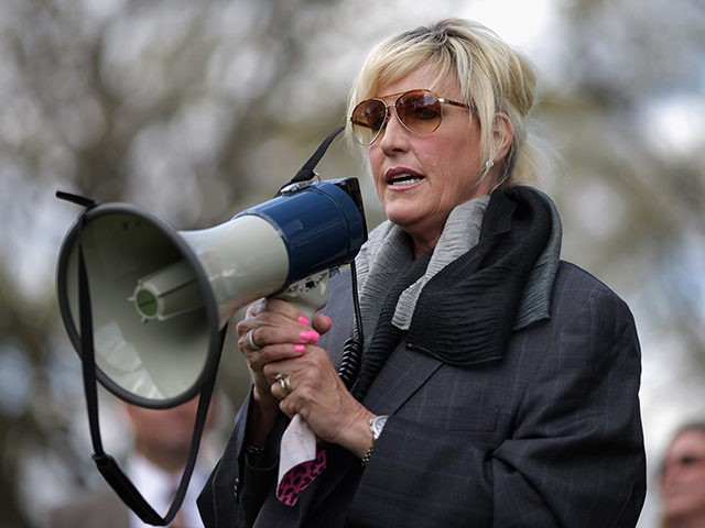 WASHINGTON, DC - APRIL 23: Consumer advocate Erin Brockovich addresses a rally against the federal government's support for what they say is a known polluter on Capitol Hill April 23, 2014 in Washington, DC. Veterans, their families and environmental and consumer advocates rallied to protest the Department of Justice's support …