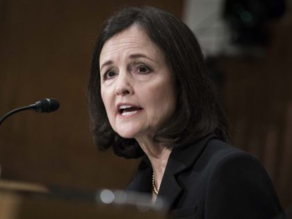WASHINGTON, DC - FEBRUARY 13: Judy Shelton testifies before the Senate Banking, Housing and Urban Affairs Committee during a hearing on their nomination to be member-designate on the Federal Reserve Board of Governors on February 13, 2020 in Washington, DC. (Photo by Sarah Silbiger/Getty Images)