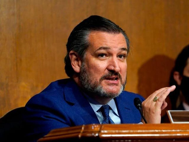 Sen. Ted Cruz, R-TX speaks during a Senate Judiciary Committee hearing on a probe of the FBIs Russia investigation on Capitol Hill in Washington, DC on November 10, 2020. (Photo by Susan Walsh / POOL / AFP) (Photo by SUSAN WALSH/POOL/AFP via Getty Images)