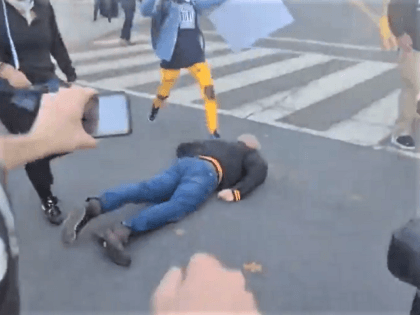 Leftists protesters stomp on a Trump supporter's head. (Twitter Screenshot @venturareport)