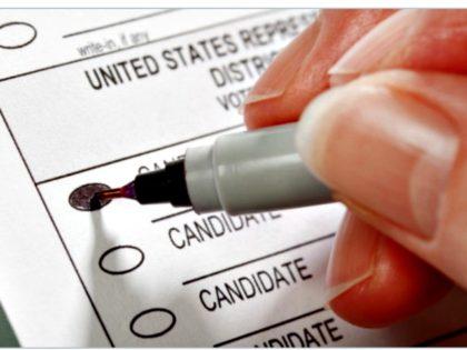 Voting with Sharpie Pen