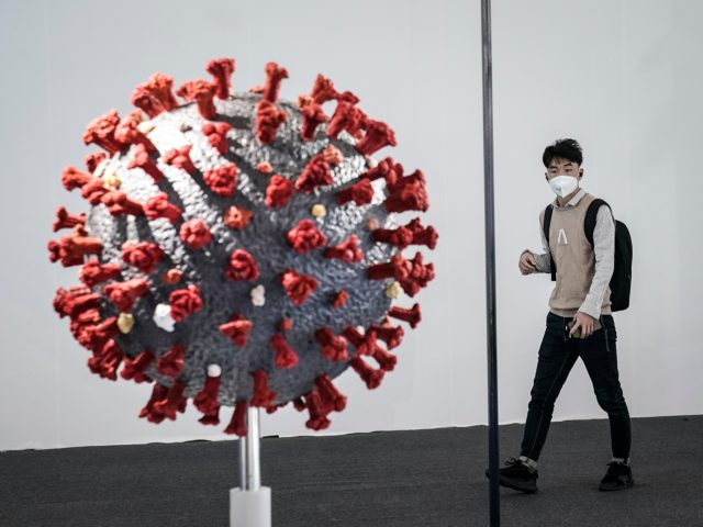 WUHAN, CHINA - NOVEMBER 13: (CHINA OUT)The guest visit the model of coronavirus during the Second World Health Expo held on November 13,2020 in Wuhan, Hubei Province, China. Which attracts some 13,000 guests from 34 countries and regions. More than 1,200 exhibitors, including General Electric, Philips and Siemens, attended the …