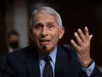 Fauci: Lack of Candor, Facts Over Last Year 'Likely' Cost Lives