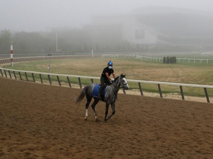 ELMONT, NEW YORK - JUNE 18: A Racehorse and Exercise Rider trains in the fog on the main track during morning workouts prior to the 152nd running of the Belmont Stakes at Belmont Park on June 18, 2020 in Elmont, New York. (Photo by Al Bello/Getty Images)