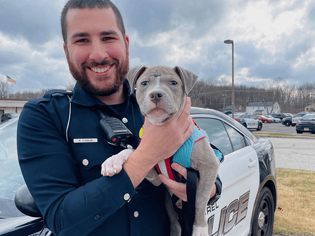 VIDEO: Policeman Adopts Injured Puppy He Saved While on Duty