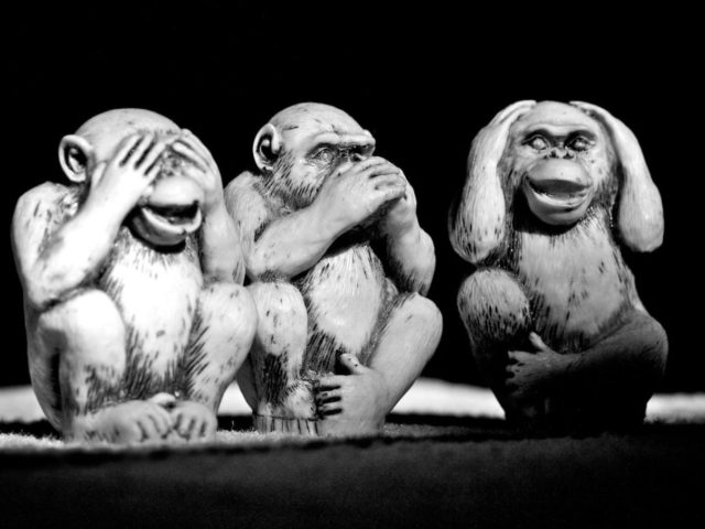 "The three wise monkeys (Japanese: 三猿, san'en or sanzaru, or 三匹の猿, sanbiki no saru, literally ""three monkeys"") are a pictorial maxim. Together they embody the proverbial principle to ""see no evil, hear no evil, speak no evil"". The three monkeys are Mizaru, covering his eyes, who sees no evil; Kikazaru, …"