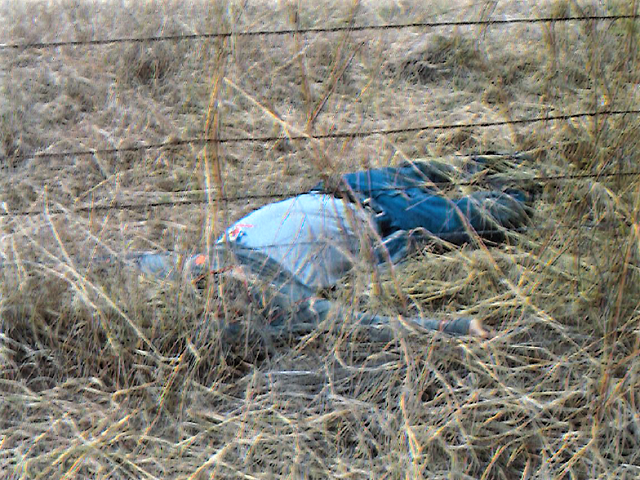 A suspected undocumented migrant is found dead on a ranch in Brooks County, Texas. (Photo: Brooks County Sheriff's Office/Deputy Jose Lemus)