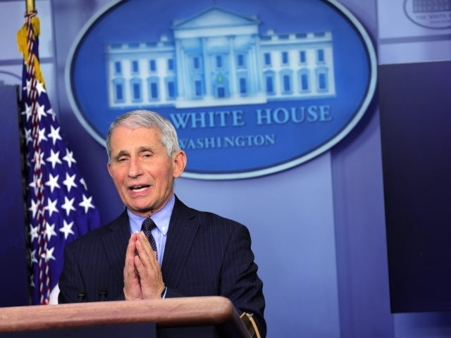 WASHINGTON, DC - JANUARY 21: Dr Anthony Fauci, Director of the National Institute of Allergy and Infectious Diseases, speaks during a White House press briefing, conducted by White House Press Secretary Jen Psaki, at the James Brady Press Briefing Room of the White House January 21, 2021 in Washington, DC. …