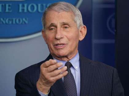 Director of the National Institute of Allergy and Infectious Diseases Anthony Fauci speaks during the daily briefing in the Brady Briefing Room of the White House in Washington, DC on January 21, 2021. (Photo by MANDEL NGAN / AFP) (Photo by MANDEL NGAN/AFP via Getty Images)