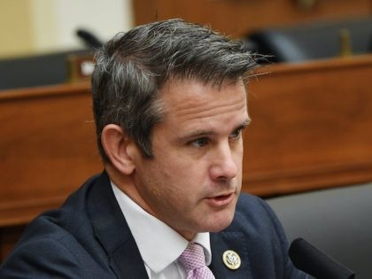 Kinzinger: GOP Going with 'Loser President' Trump Is Not Providing a 'Path to the Future'