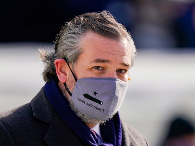 "WASHINGTON, DC - JANUARY 20: Sen. Ted Cruz (C) (R-TX), wearing a face mask that reads ""Come and Take It"", arrives to the inauguration of U.S. President-elect Joe Biden on the West Front of the U.S. Capitol on January 20, 2021 in Washington, DC. During today's inauguration ceremony Joe Biden …"